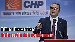 Bülent Tezcan'dan Afrin zeytin dalı açıklaması?