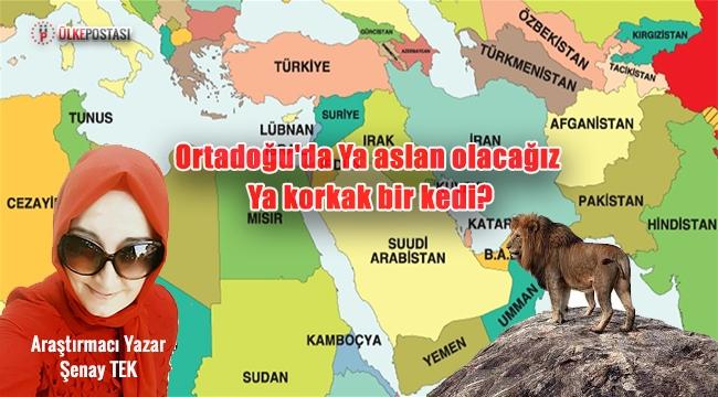 Ortadoğu'da Ya aslan olacağız Ya korkak bir kedi?