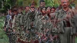 PKK'da Korona virus yayıldı?