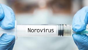 Norovirüs nedir, belirtileri nelerdir, nasıl geçer? İşte norovirüs 2021 özellikleri