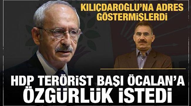 HDP'den terörist başı Öcalan'a özgürlük isteği!