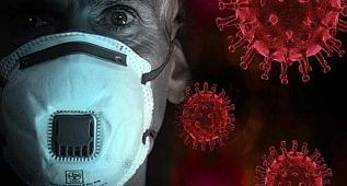 Fransa'da Korona virus nasıl yayıldı?